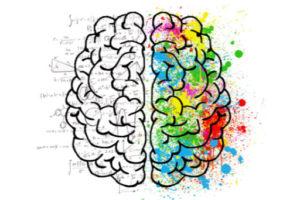 Kresba mozku
