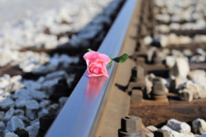 Růže na koleji